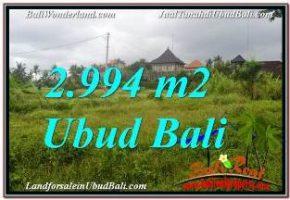 JUAL TANAH MURAH di UBUD BALI Untuk INVESTASI TJUB672