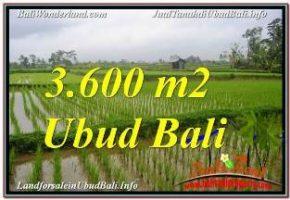 DIJUAL TANAH di UBUD BALI TJUB673