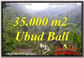 DIJUAL TANAH di UBUD Untuk INVESTASI TJUB674