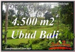 TANAH di UBUD DIJUAL MURAH 4,500 m2 VIEW LINGKUNGAN VILLA