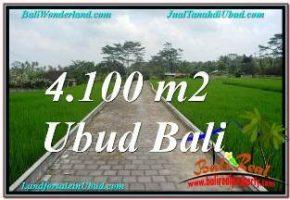 DIJUAL MURAH TANAH di UBUD BALI 41 Are di SENTRAL UBUD
