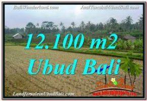 DIJUAL MURAH TANAH di UBUD BALI Untuk INVESTASI TJUB677
