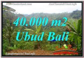 TANAH MURAH di UBUD 40,000 m2 VIEW SUNGAI DAN TEBING