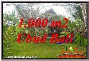 DIJUAL TANAH MURAH di UBUD BALI 1,000 m2 di SENTRAL UBUD