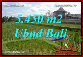 JUAL Tanah Murah di Ubud Bali 5,450 m2  View sawah, lingkungan Villa