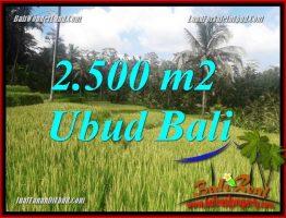 JUAL Tanah di Ubud TJUB690