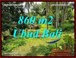 Tanah Dijual di Ubud 9 Are View sawah dan kebun