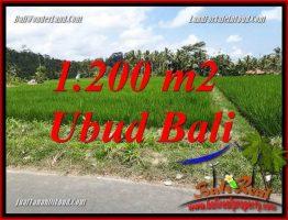 JUAL Tanah di Ubud 1,200 m2 di Ubud Tampak Siring