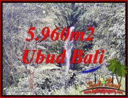 Tanah Murah jual di Ubud Bali 5,960 m2 View sawah dan sungai