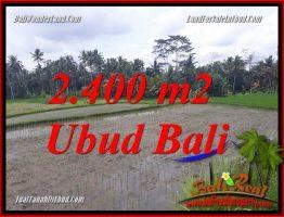 Tanah Dijual di Ubud Bali TJUB697
