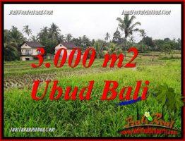 Tanah di Ubud Bali Dijual 30 Are View sawah dan pangkung