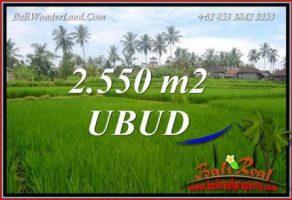 Investasi Property, jual Tanah Murah di Ubud TJUB700