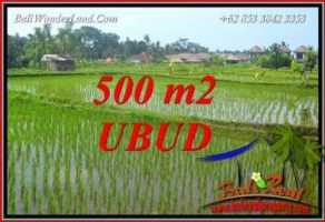 Tanah Murah Dijual di Ubud Bali 500 m2 di Sentral Ubud