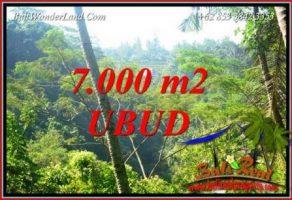 JUAL Tanah di Ubud Bali Untuk Investasi TJUB714