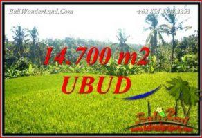 Investasi Property, Tanah Murah di Ubud Bali Dijual TJUB717