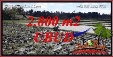 Investasi Properti, Tanah Murah Dijual di Ubud Bali TJUB722