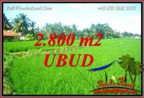 Tanah Murah di Ubud 28 Are View Sawah Lingkungan Villa