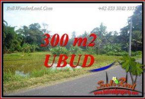 Dijual Tanah Murah di Ubud Bali Untuk Investasi TJUB730