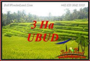 Tanah Dijual di Ubud 30,000 m2 View sawah, tebing dan sungai