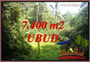 JUAL Tanah di Ubud Bali 7,700 m2 View Air Terjun