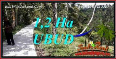 Investasi Properti, Tanah Dijual di Ubud Bali TJUB740
