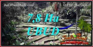 JUAL Tanah di Ubud 780 Are View sawah, tebing dan sungai
