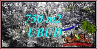Tanah Dijual di Ubud Bali 750 m2 View Tebing dan Sungai