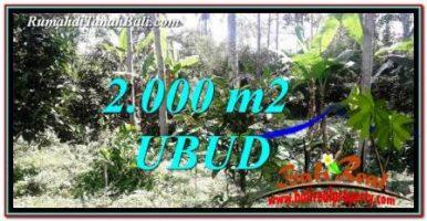 JUAL MURAH TANAH di UBUD BALI 2,000 m2  View kebun
