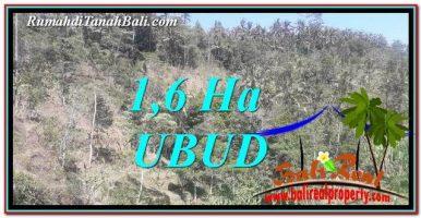 DIJUAL MURAH TANAH di UBUD BALI Untuk INVESTASI TJUB748