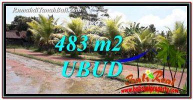 TANAH MURAH JUAL di UBUD BALI 483 m2 View Sawah