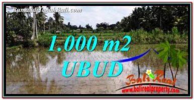 TANAH MURAH JUAL di UBUD BALI 1,000 m2 View Sawah dan pangkung
