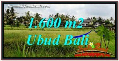 JUAL TANAH di UBUD 16 Are di Ubud Tampak Siring