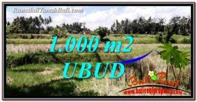 DIJUAL TANAH MURAH di UBUD BALI Untuk INVESTASI TJUB760
