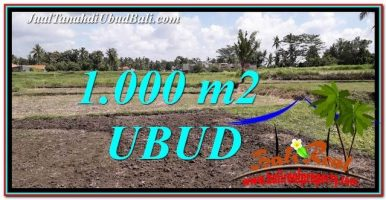 TANAH MURAH DIJUAL di UBUD 1,000 m2 di Sentral Ubud