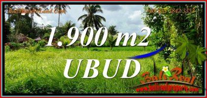 TANAH di UBUD JUAL MURAH 19 Are View Sawah, Jungle dan Sungai Kecil