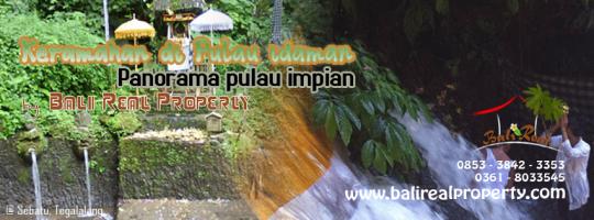 Tanah dijual Murah di Ubud dan Peluang Investasi Property di Bali